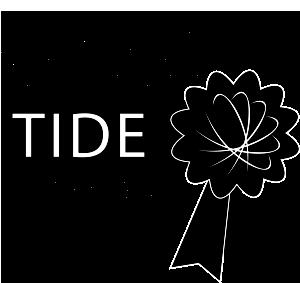ENEI TIDE Gold Standard 2021